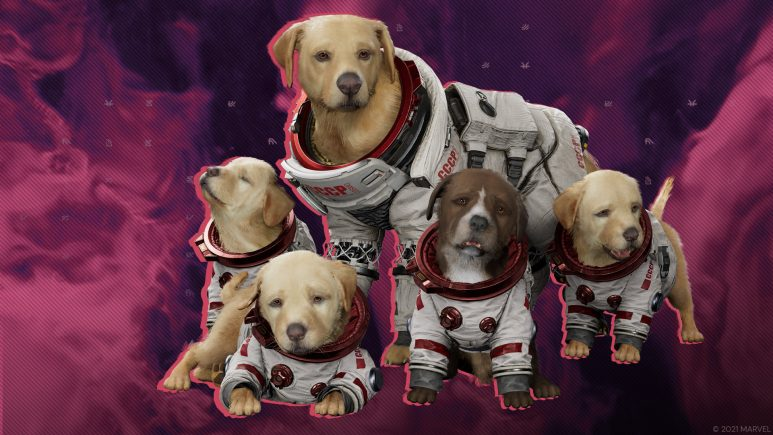Meet Cosmo the Space Dog
